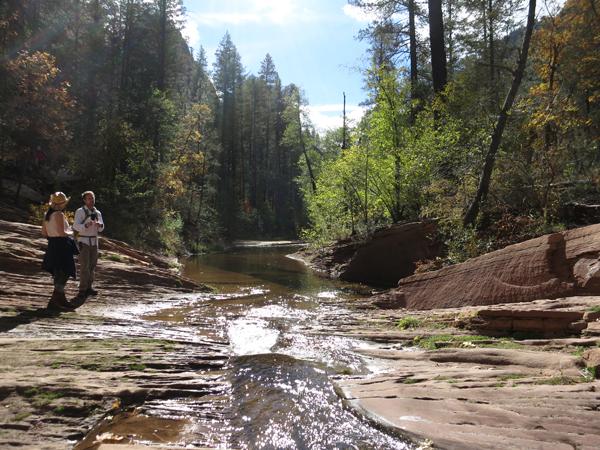 West Fork Hike