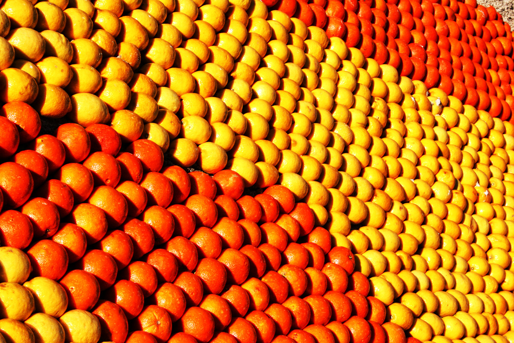 lemon-festival-lemon-and-oranges