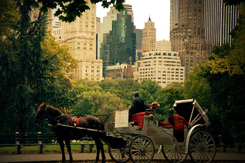 Romantic New York City