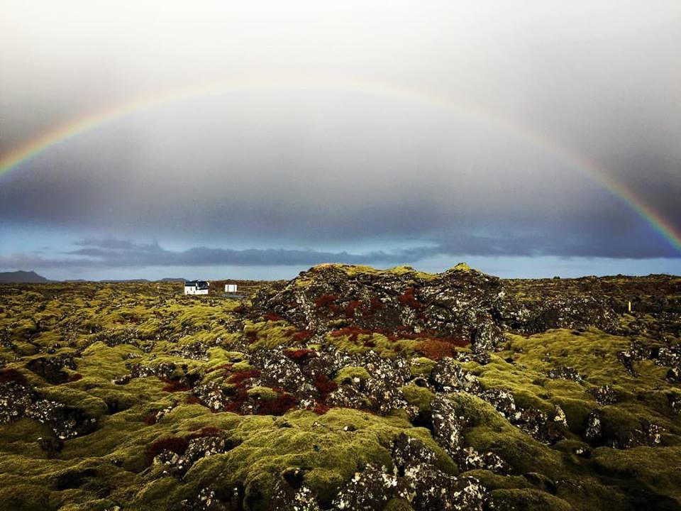 Just outside of the Blue Lagoon, moss covered lava fields, pic. 10