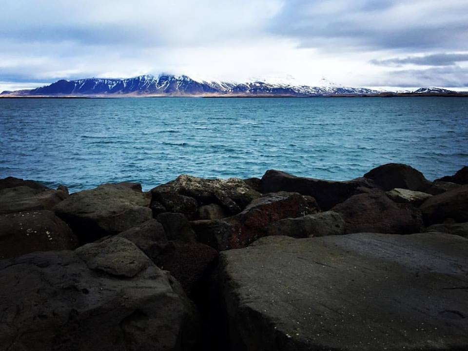Reykjavik Harbour, Pic 2