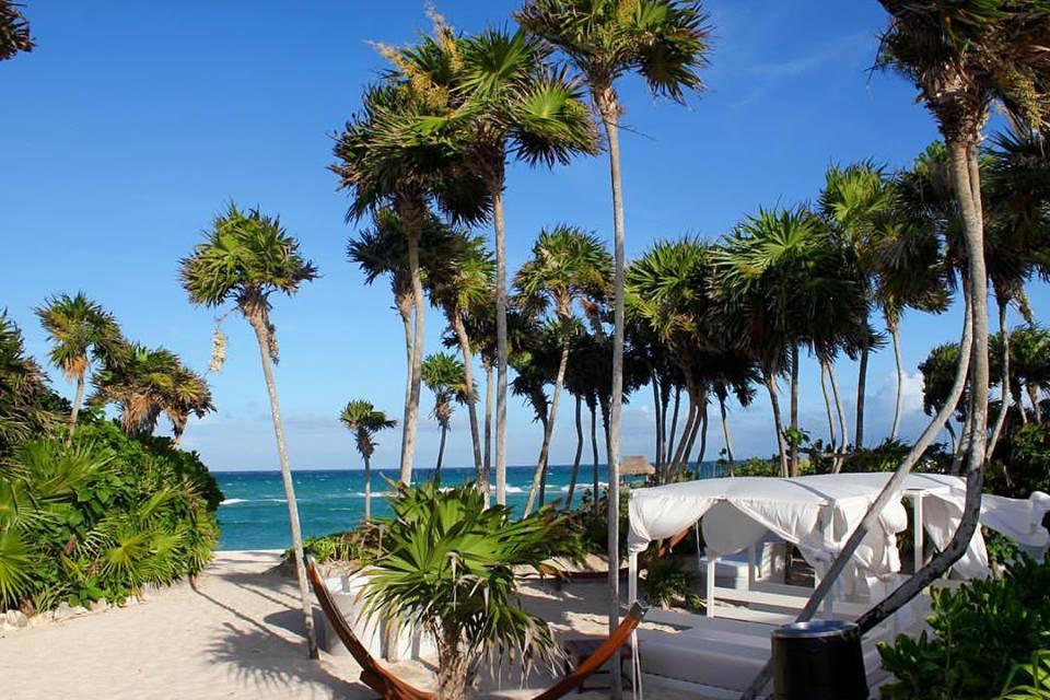 hammocks at Vidanta Riviera Maya