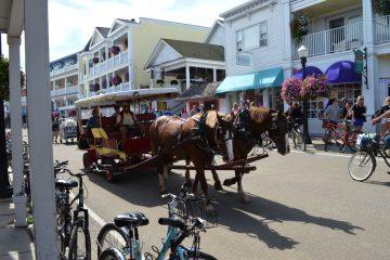 carriage-horse-mackinac-island