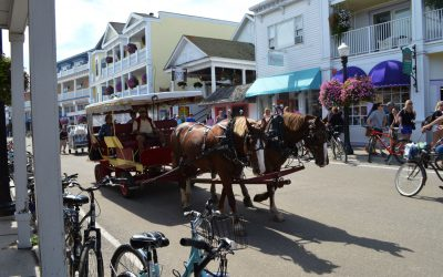 carriage-horse-mackinac-island
